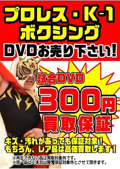 DVD プロレス