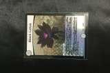 デュエルマスターズ「Black Lotus」を買取りしました!